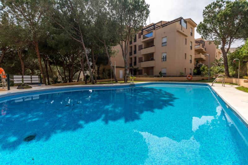Apartment - real estate in Elviria