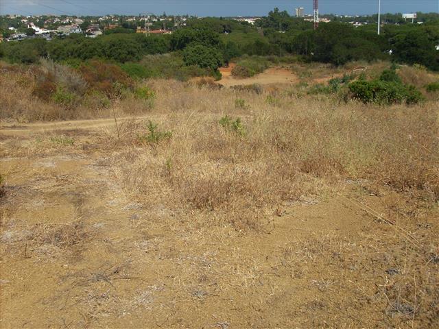 Plot - real estate in Las Chapas
