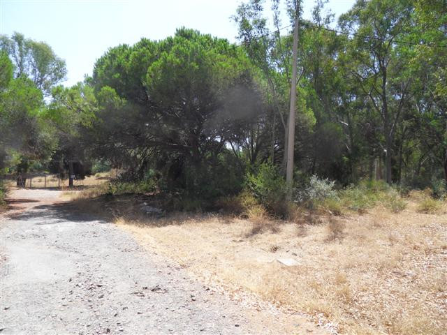 Jord - ejendomsmægler i Las Chapas