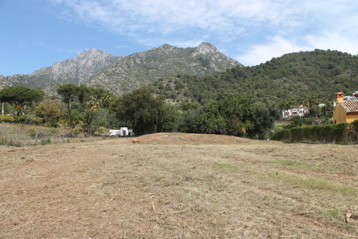 Plot in Sierra Blanca
