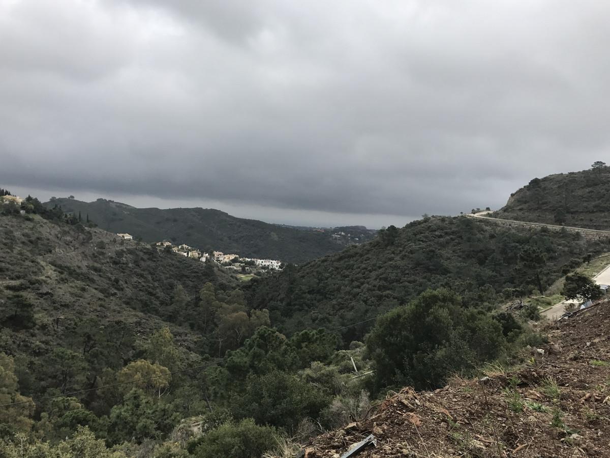 Plot in El Madronal