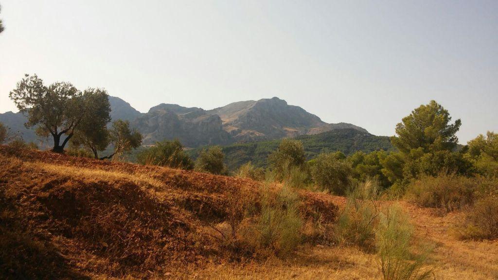 Участок - El Burgo