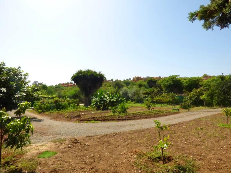 Residential Plot in Puerto Banus