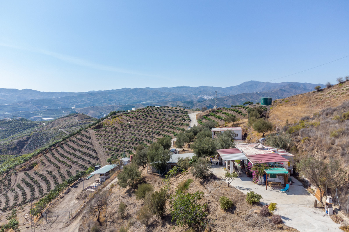 Beautiful Finca in Triana - Velez Malaga  This farm has a land area of ??4000 m2, has no houses with,Spain
