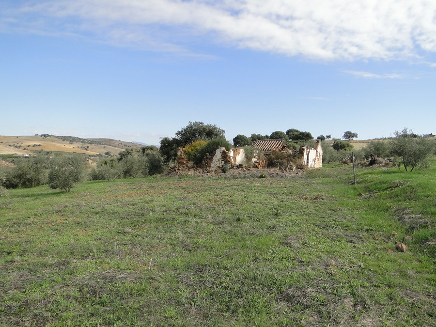 Olive grove with ruin located in a rural location with beautiful views.  Situated 10 minutes from th,Spain