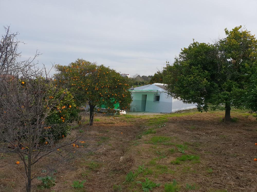 Ref:R3337027 Plot - Land with Ruin For Sale in Alhaurín el Grande