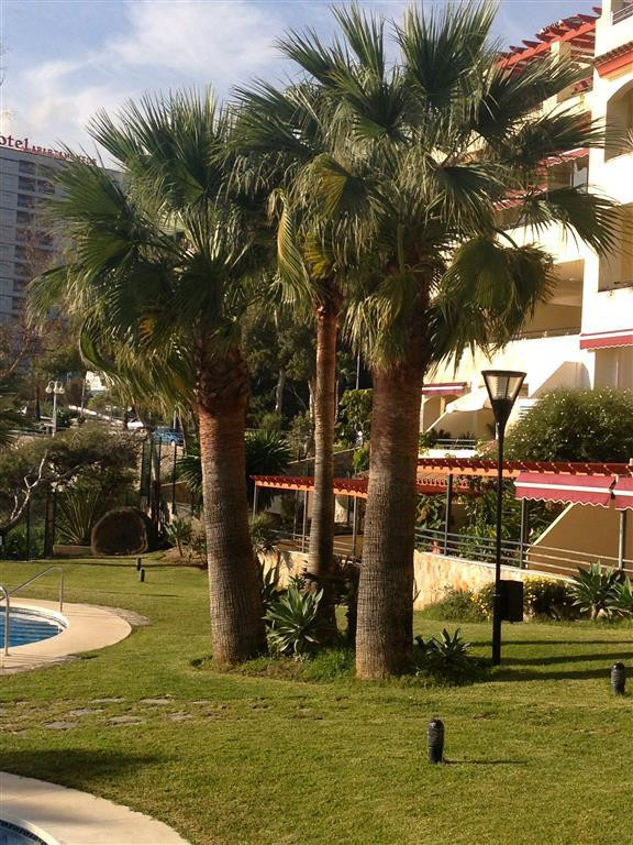 Apartment Middle Floor Benalmadena Costa Málaga Costa del Sol R3010555 3