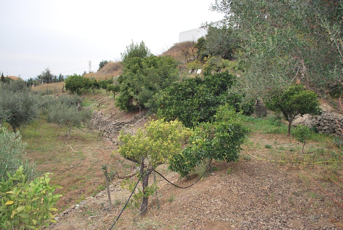 House in Alhaurín de la Torre R3010597 24
