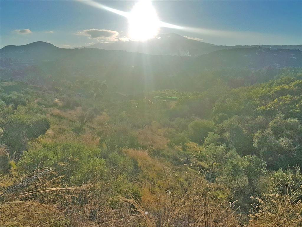 Rustic land in Coin with panoramic views, licenced well water and electricity connected. The plot is,Spain