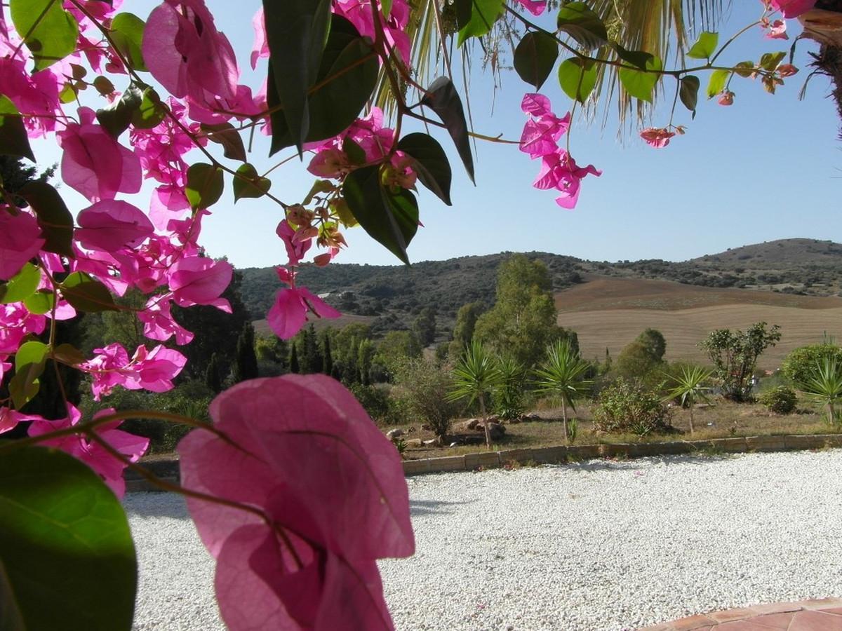 House in Almogía R3364516 31