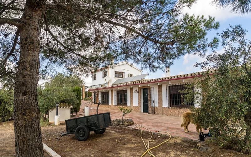 Plot – 70.000 m² all fenced. Main house 3 bedrooms 3 bathrooms Built: 300 m² Main house 100 m² of ga,Spain