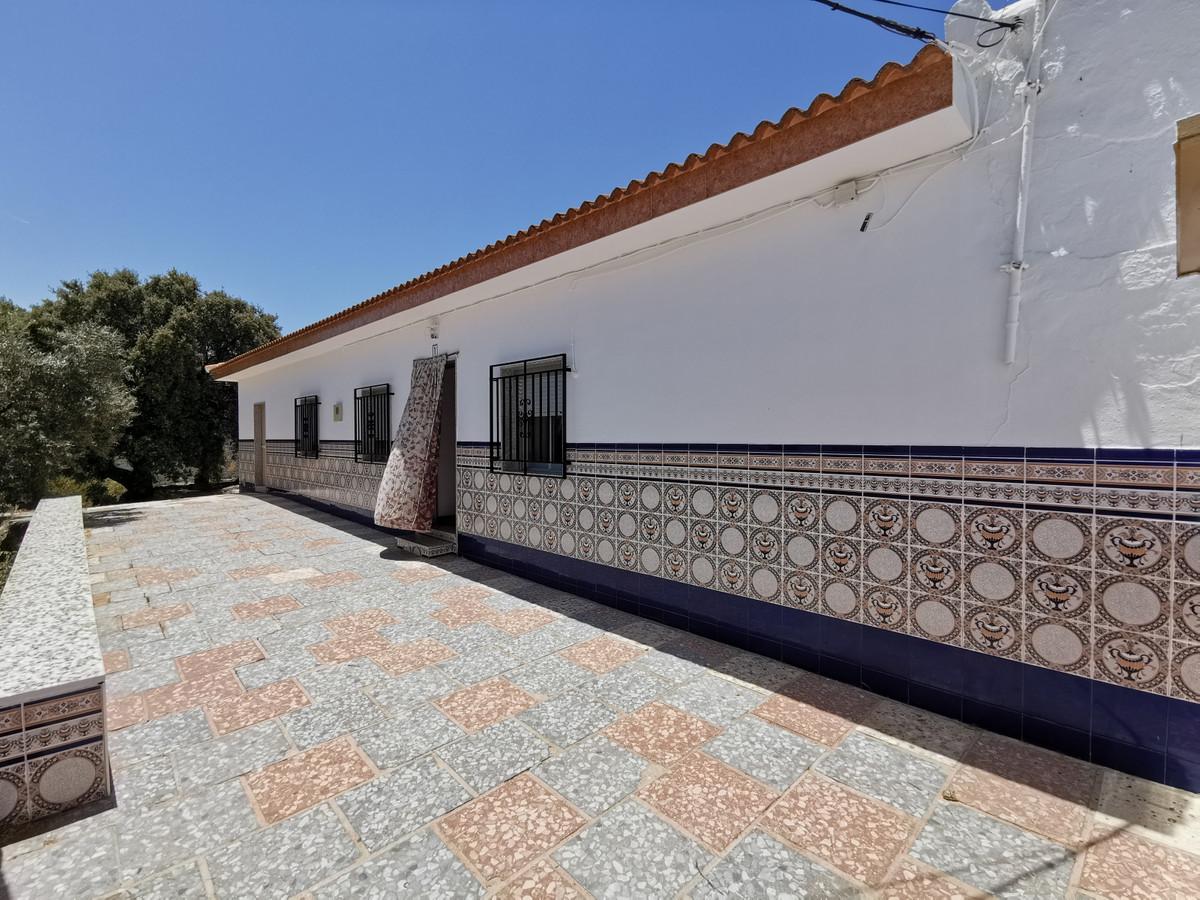 FARMHOUSE IN FUENTE DE CAMACHO (LOJA - GRANADA)  Fantastic finca with farmhouse in Fuente de Camacho,Spain