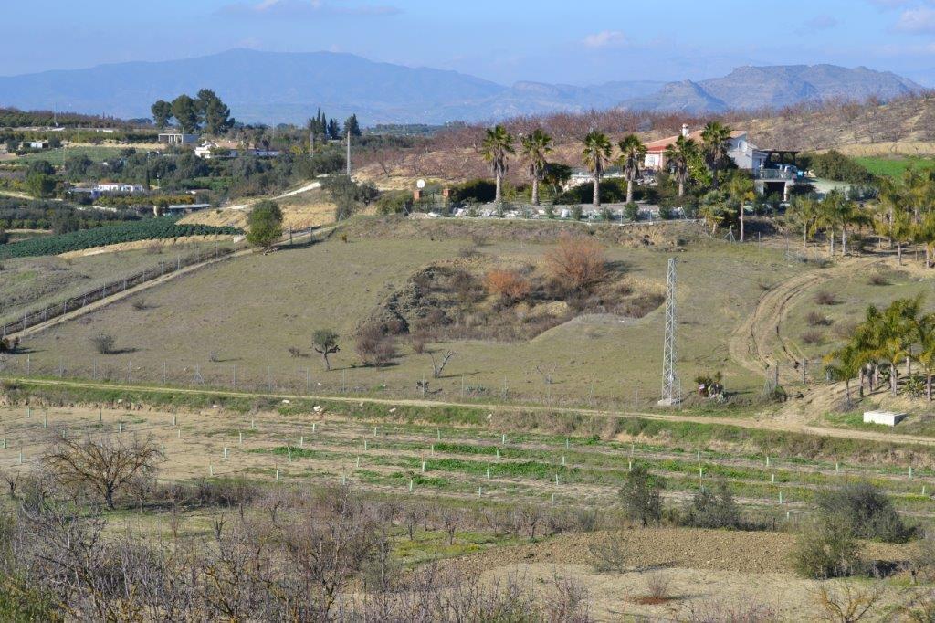 R2835044: Plot for sale in Alhaurín el Grande