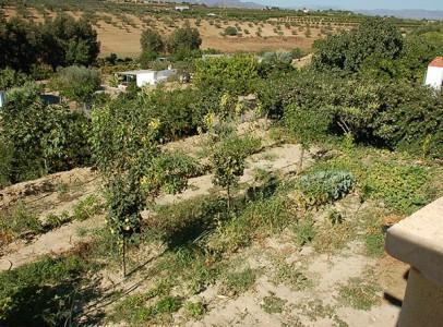 Hus in Alhaurín el Grande R2525240 4