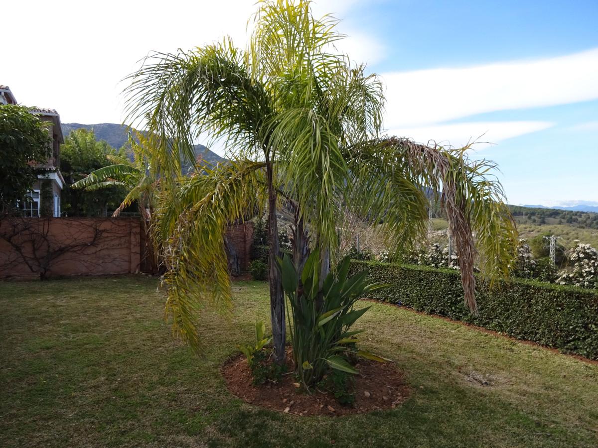 House in Alhaurín de la Torre R3346951 25