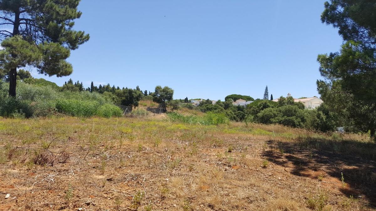 Residential Plot in Las Chapas R2959091