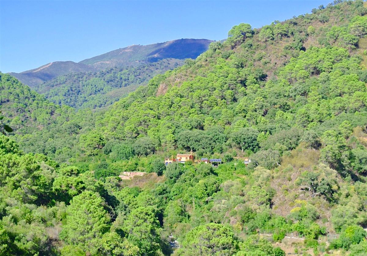 5 bedroom villa for sale istan