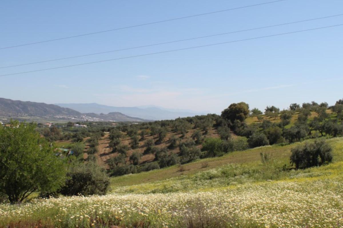 House in Alhaurín el Grande R3744406 34