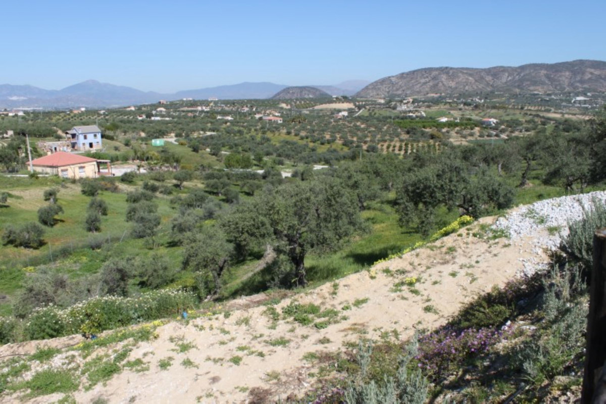 House in Alhaurín el Grande R3744406 49