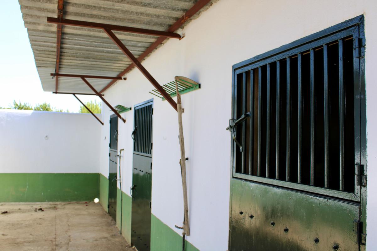 House in Alhaurín de la Torre R3666431 18