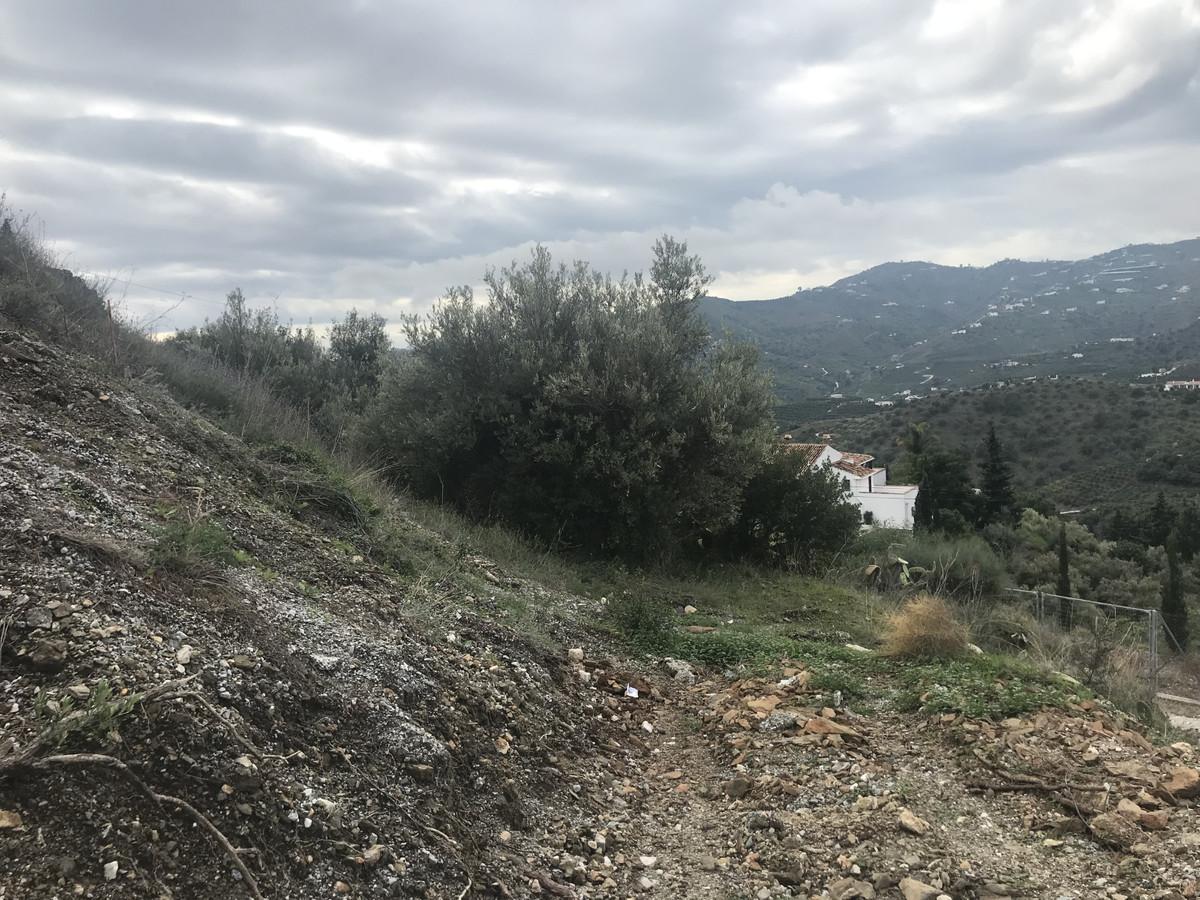 Ref:R3317503 Plot - Land For Sale in Frigiliana