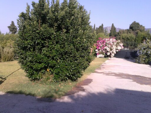Hus in Alhaurín de la Torre R3116326 22