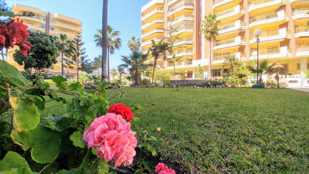 Commercial Premises, Fuengirola, Costa del Sol. Built 445 m².  Setting : Town, Commercial Area, Beac,Spain