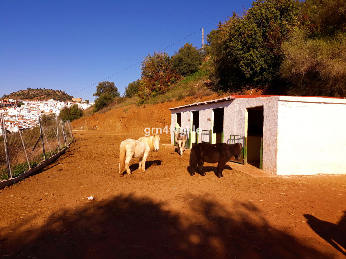 House in Almogía R3326725 18