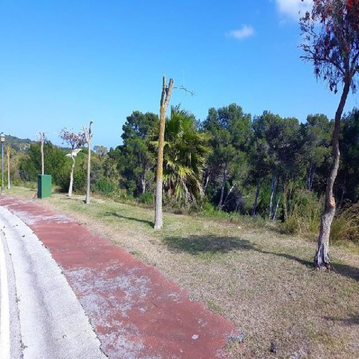 Residential Plot, Sotogrande, Costa del Sol. Garden/Plot 2475 m². THE RESERVE OF SOTOGRANDE. reduced,Spain