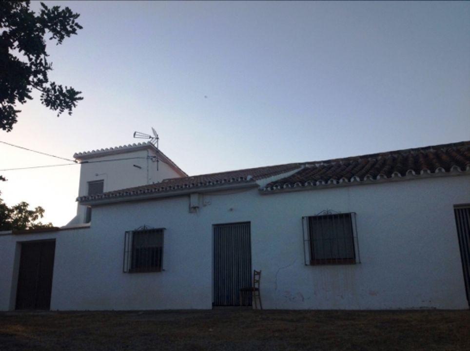 Finca - Cortijo in Almayate