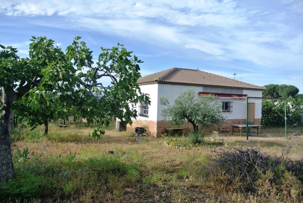 House in Alhaurín de la Torre R3433633 19