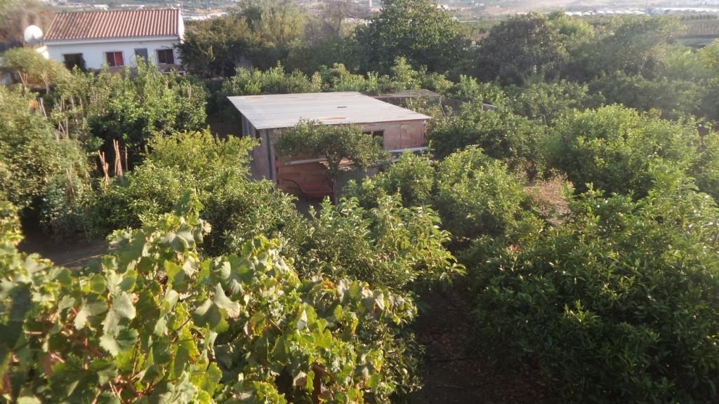 House in Alhaurín de la Torre R3510400 26