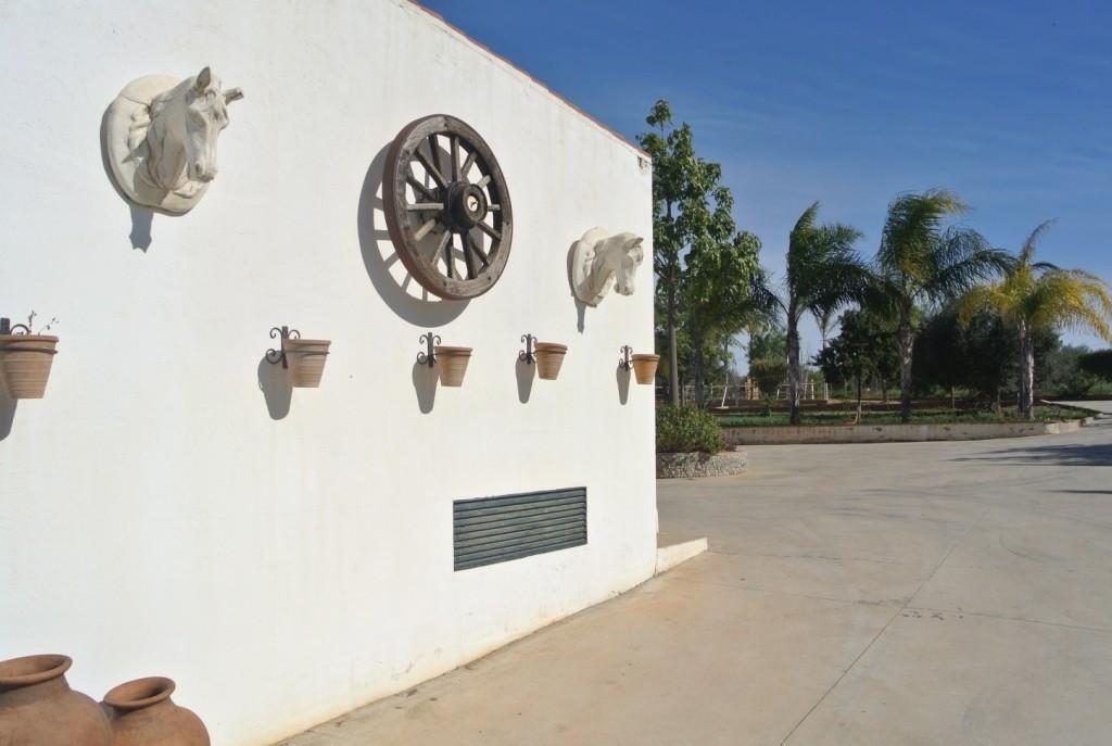 House in Alhaurín de la Torre R3349705 36