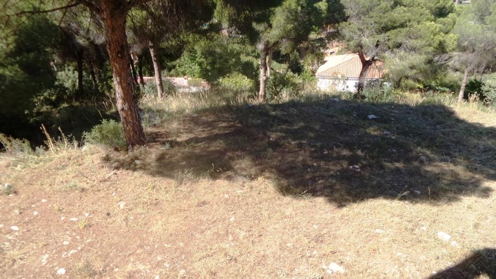 House in Alhaurín de la Torre R3430948 9
