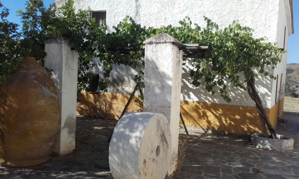 House in Almogía R3182878 2