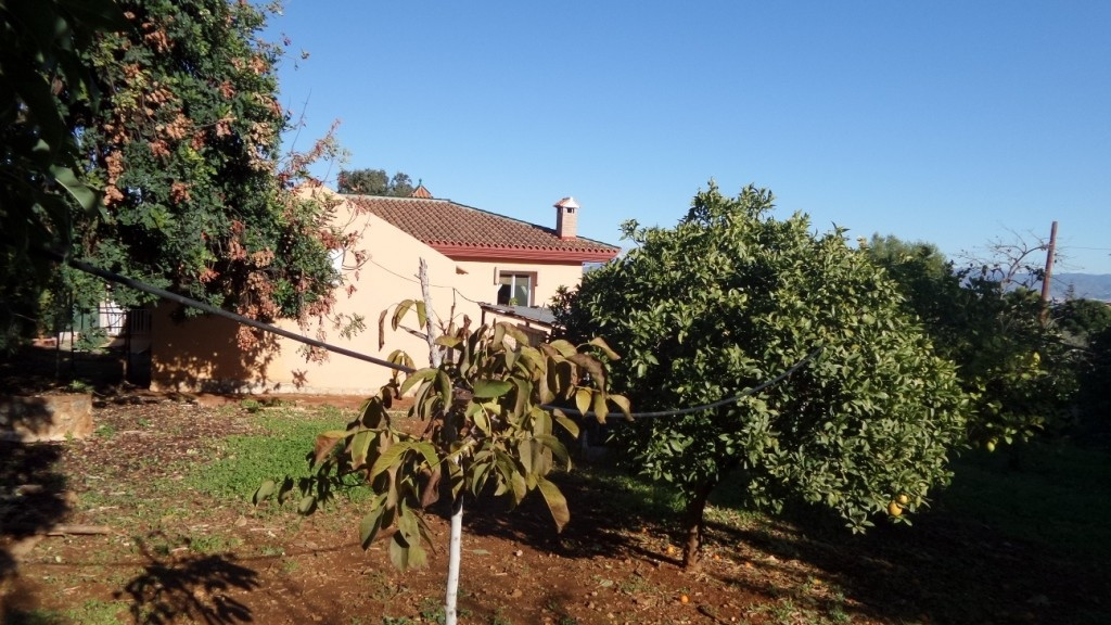 Hus in Alhaurín de la Torre R3065536 29