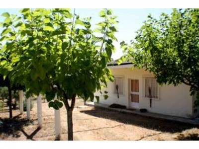 Country house to renovate of 60m2. With a layout of 3 bedroom ,bathroom and kitchen. The structure i,Spain
