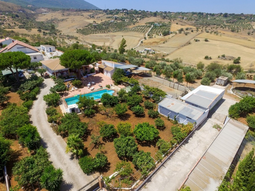 Villa in La Alqueria with stables, paddocks, olives, grapes tree and artisan winery.  It is distribu,Spain