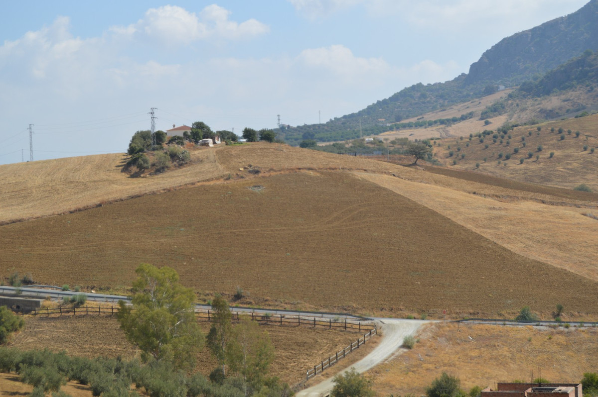 Land - Alora