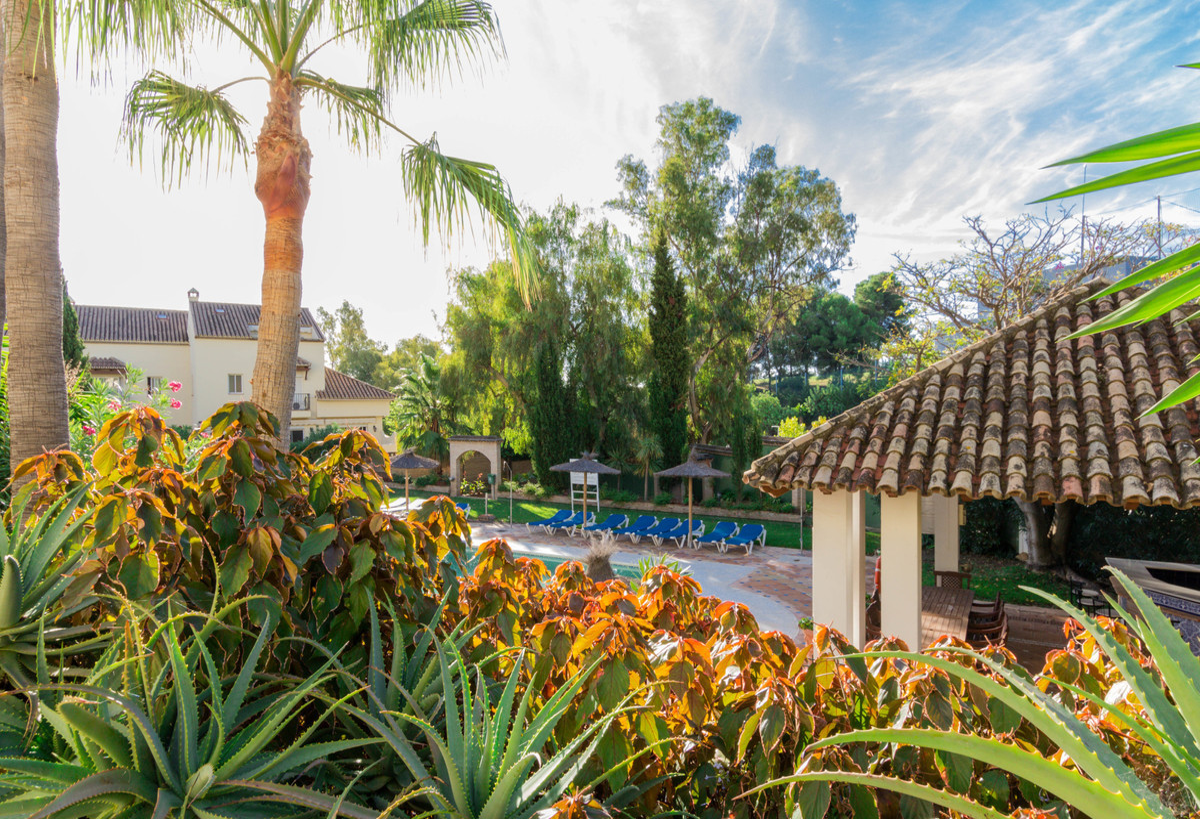 Appartement, Rez-de-chaussée  en vente   et en location    à Nueva Andalucía