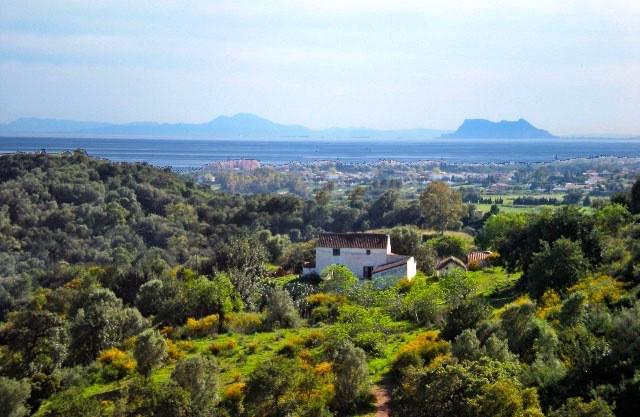 Villa / Property Estepona