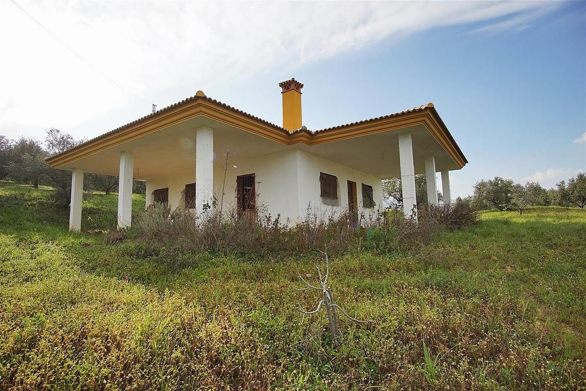 Photo of property R3799957, 7 de 27