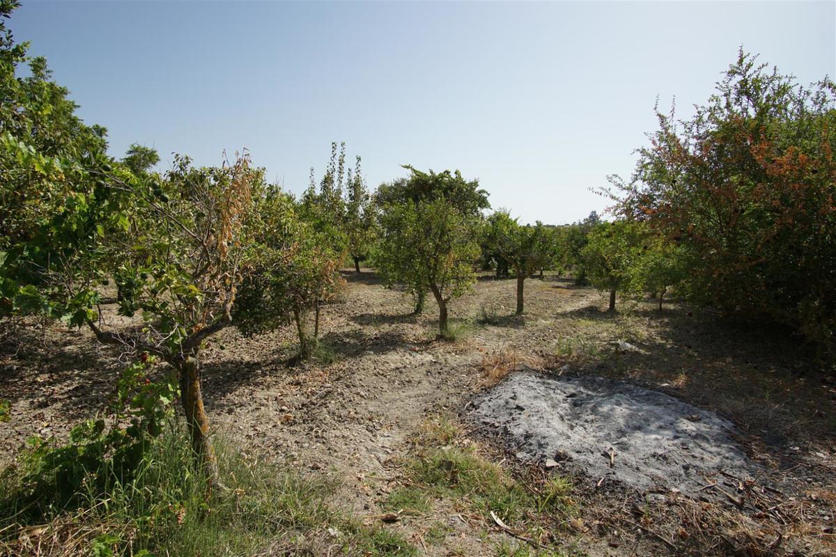 Photo of property R3688412, 20 de 23