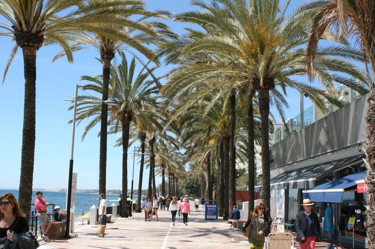 Commerce, Magasin  en vente    à Marbella