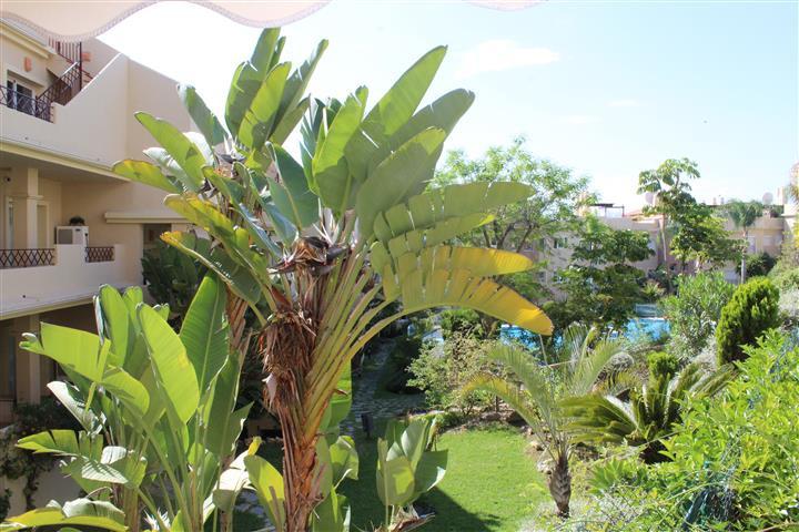 Apartamento  Planta Baja en venta   en Benahavís