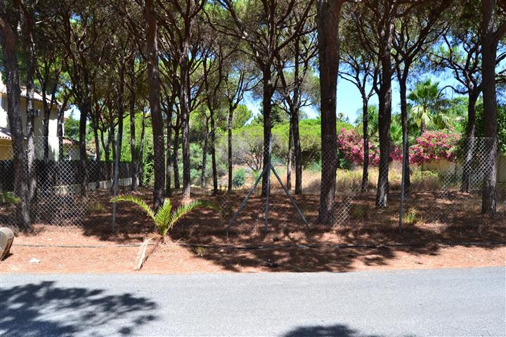 0-bed-Residential Plot for Sale in Hacienda Las Chapas