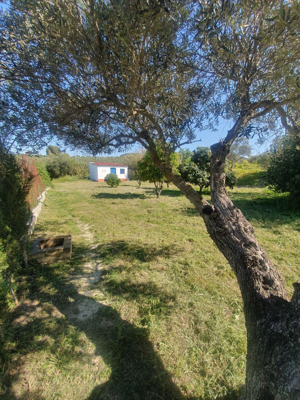 House in Alhaurín el Grande R3628043 26
