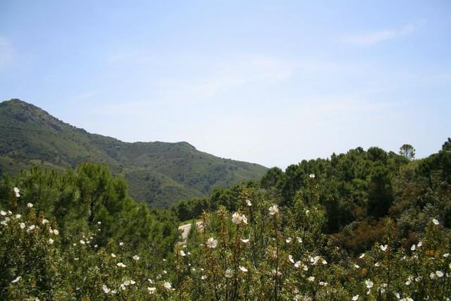 Plot / Land - Benahavís