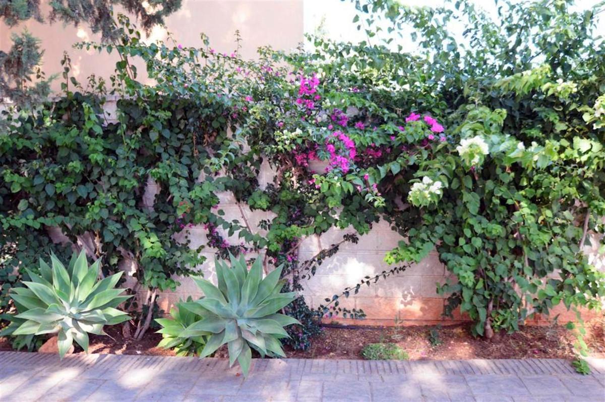 House in Alhaurín de la Torre R3379084 24