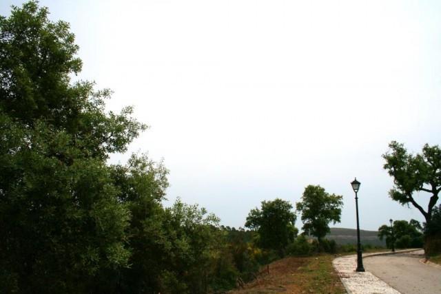 0-bed-Residential Plot for Sale in Benahavís